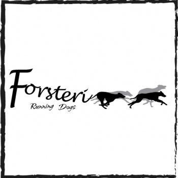 Forsteri