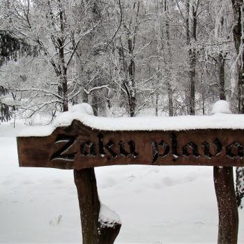 Vilces dabas parks
