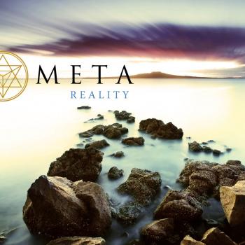 Meta Reality web site