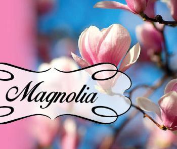 Skaistumkopšanas salons Magnolia